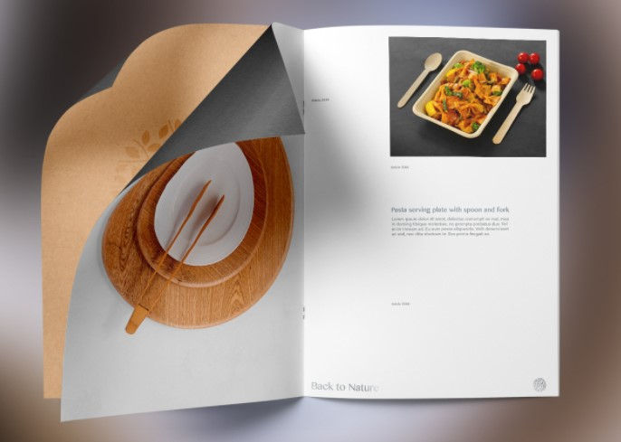 Publication Graphic Design: An Art of Visual Communication
